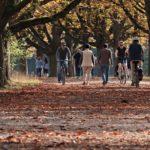 太陽と散歩が大好き!!自然をこよなく愛する国「ロシア」